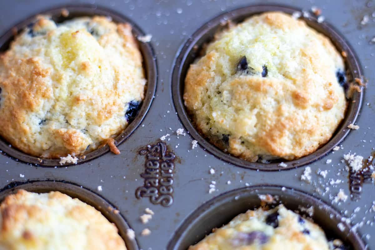 Baked Lemon Blueberry Muffins in muffin tin warm from the oven.