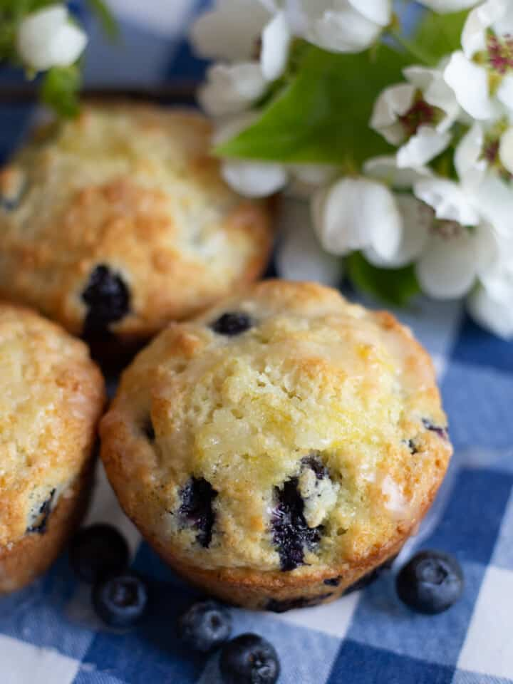 3 blueberry muffins on blue and white napkin