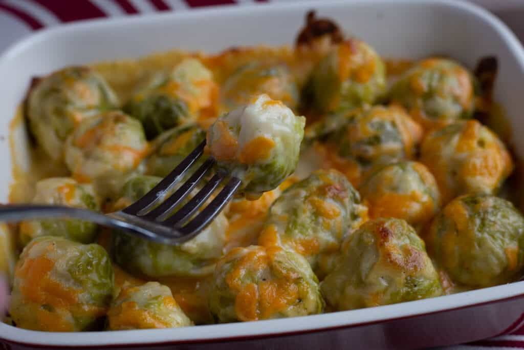Baked cheesy Brussel sprouts in a red casserole dish. In the foreground is a closeup of the fork with a cheesy Brussel sprout on the end of the fork.