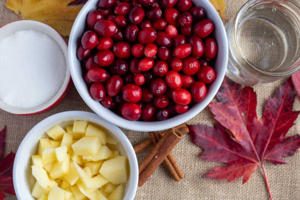 Cranberries, chopped apples, a glass of water and small red bowl of sugar sit on a pice of brown burlap. There are real maple leaves surround the photo and three cinnamon sticks.