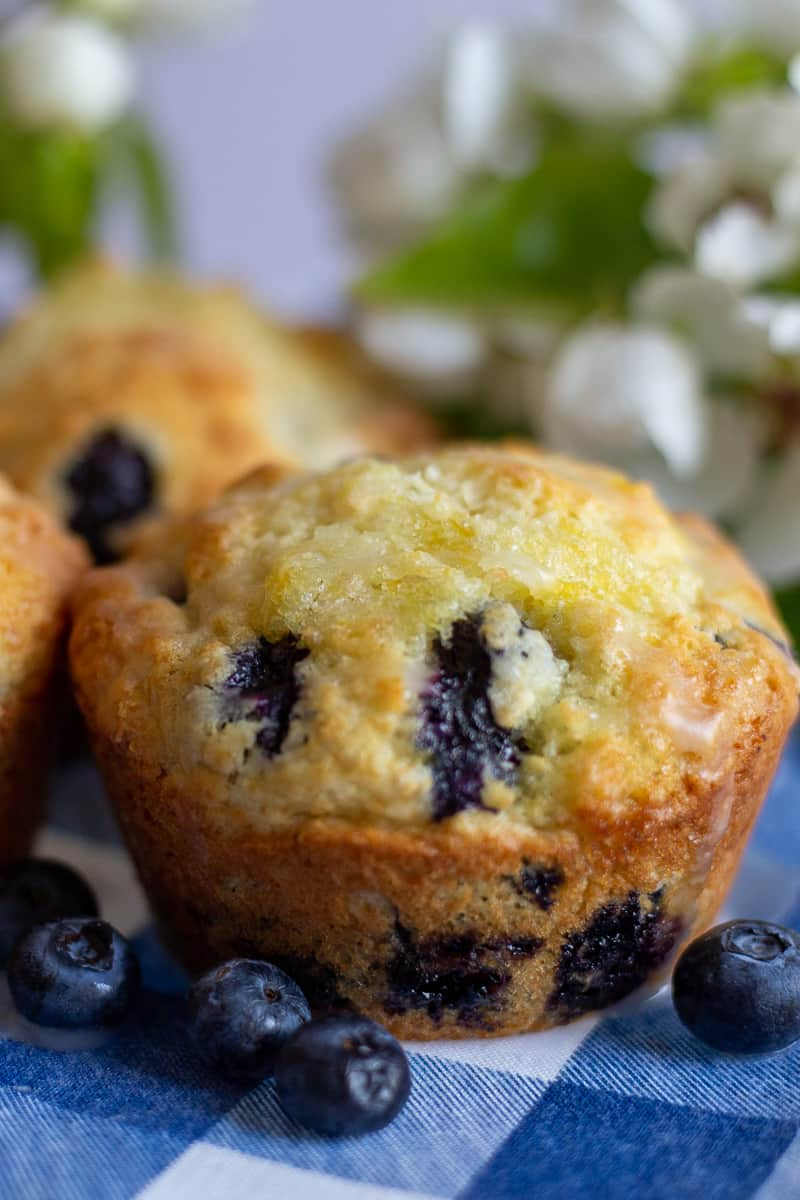 Close up image of lemon blueberry muffin on blue and white checkered napkin.