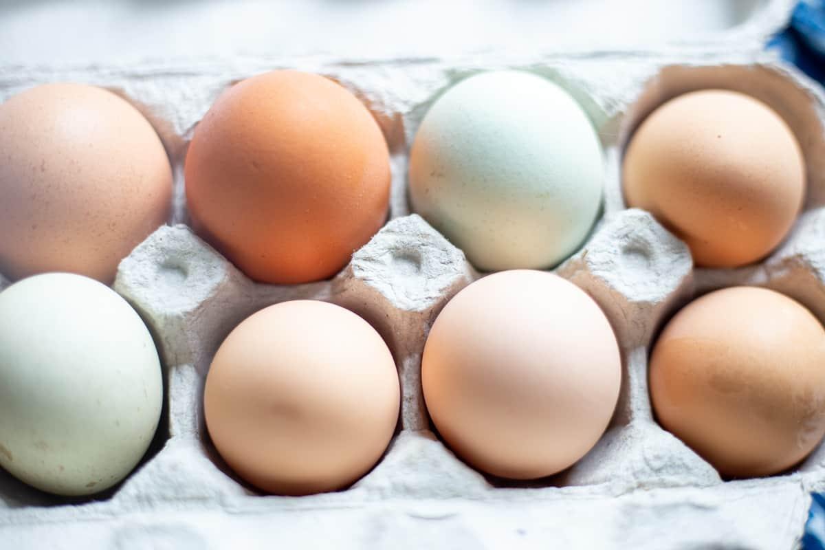 Eggs in carton.
